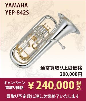 YAMAHA YEP-842S