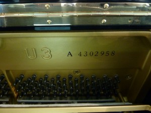 P1170803